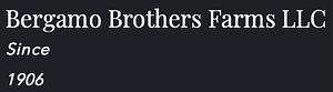 b_brothers